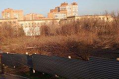 Хроника уничтожения сквера в красноярском Студгородке
