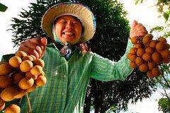 Самые популярные фото-темы у туристов в Таиланде