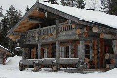 Сказочный дом из сухостойной сосны