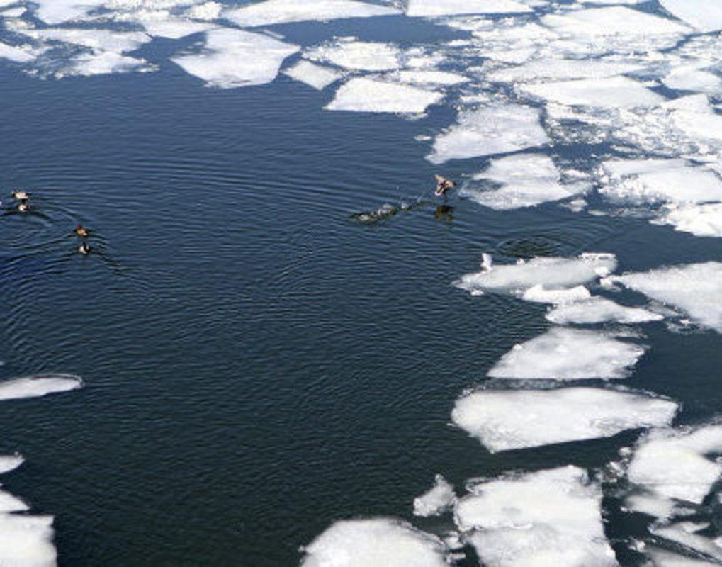 На Красноярском море спасли выбравшегося из полыньи рыбака