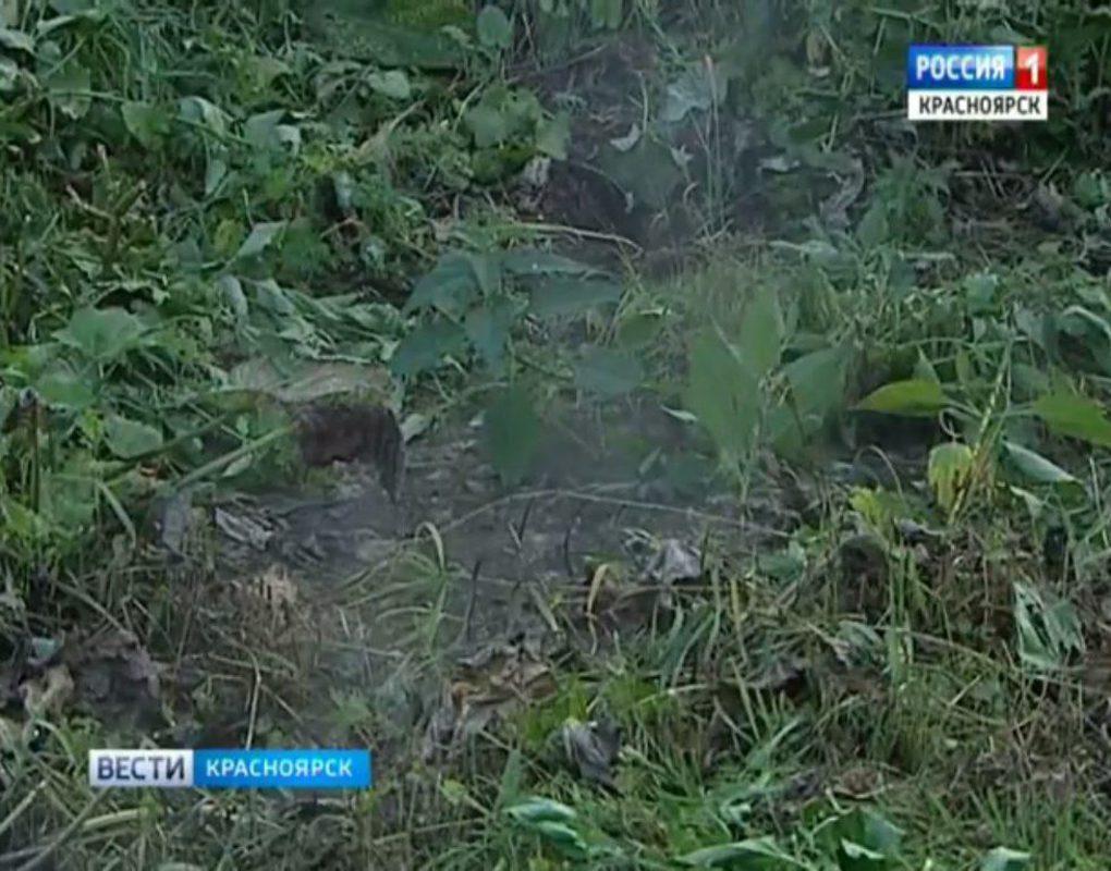 В Красноярске дворник провалился в яму с кипятком