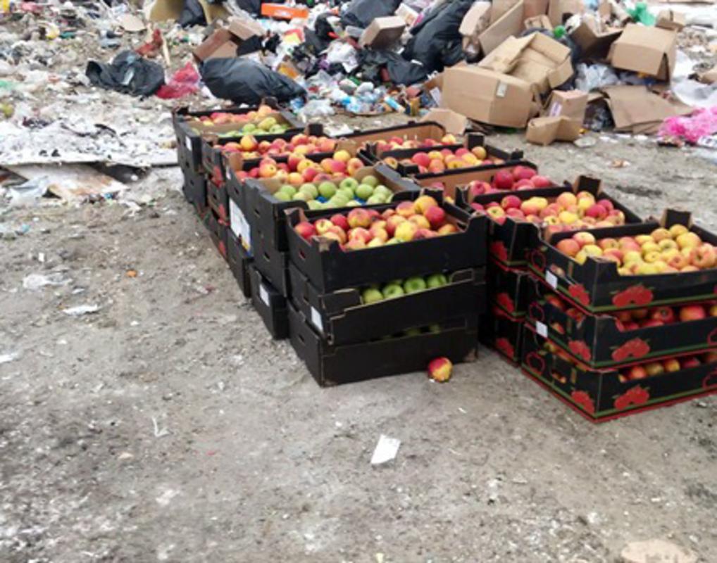 Полтонны яблок из Польши раздавили на полигоне в Красноярске