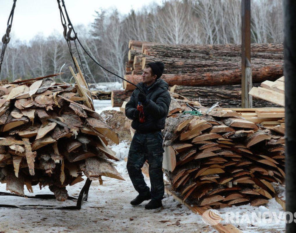 В Богучанском районе края требуют ликвидировать свалки отходов деревопереработки