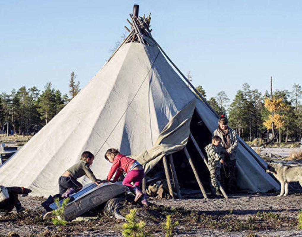 Северянам помогут пережить изменение климата в Красноярском крае