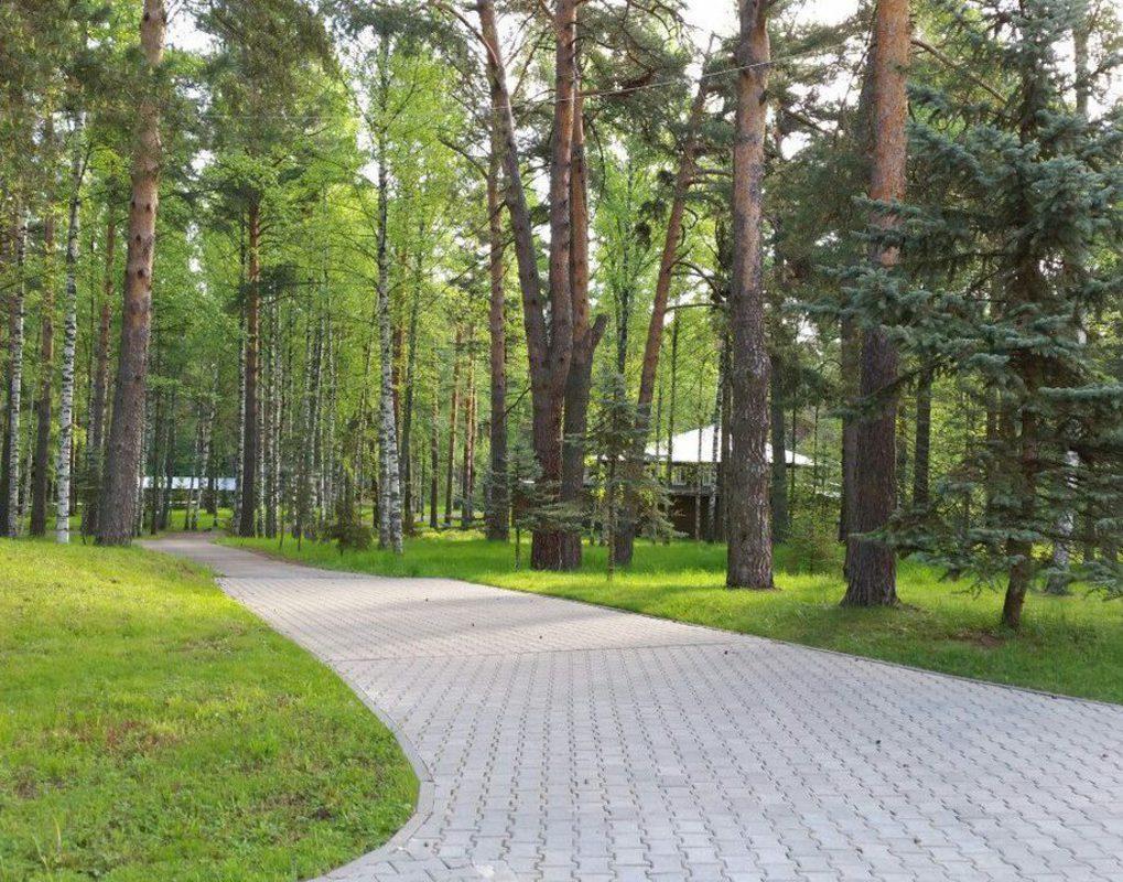 Мэрия Красноярска закупает новую технику для покоса травы