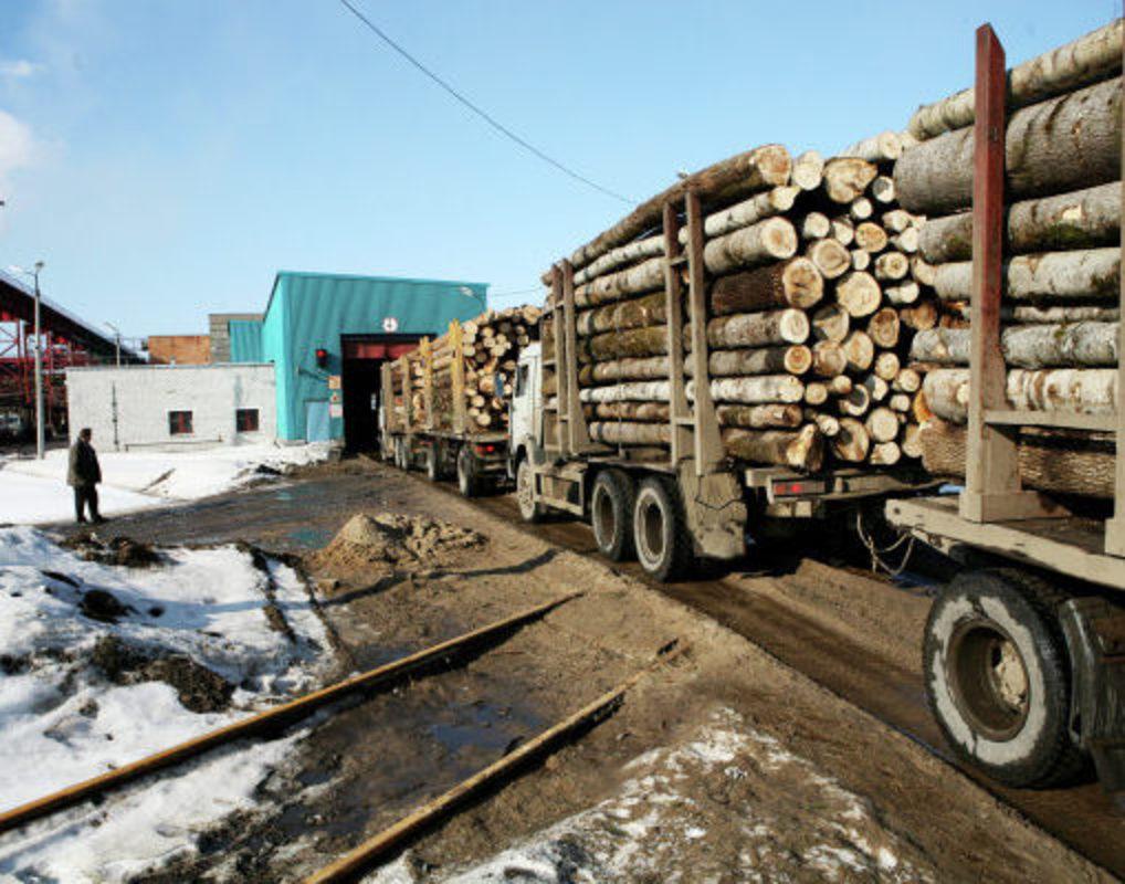 Китай готов инвестировать в строительство ЦБК в Красноярском крае миллиарды юаней
