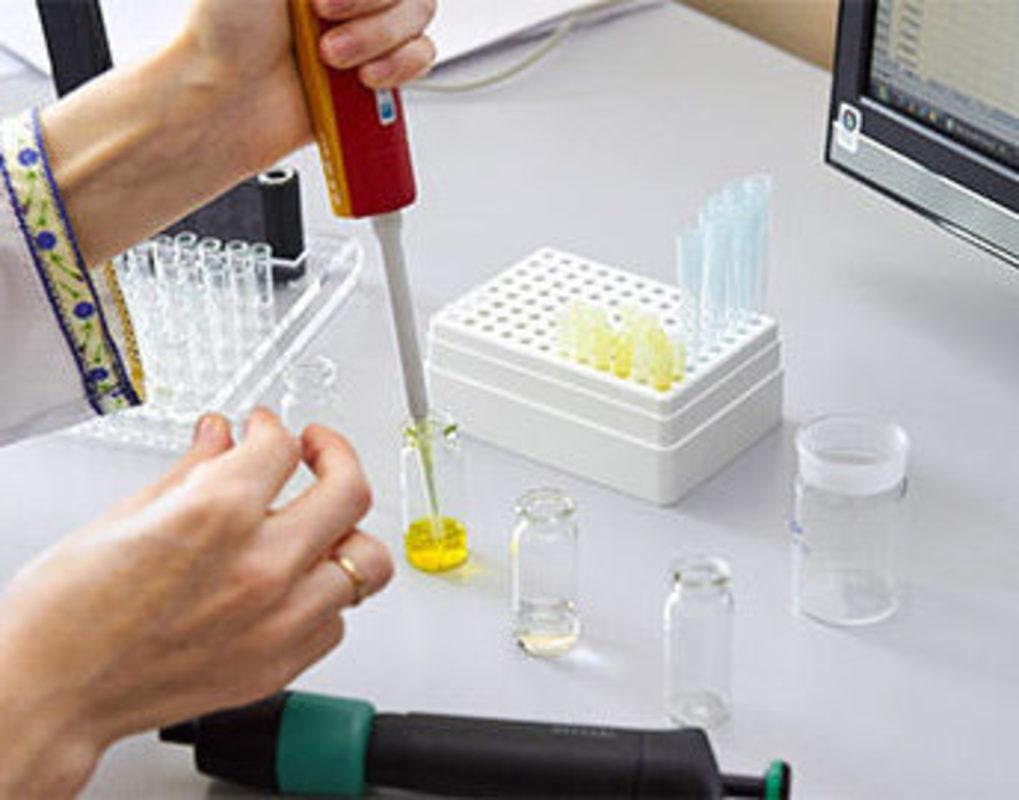 Красноярские ученые создают светящиеся биотесты