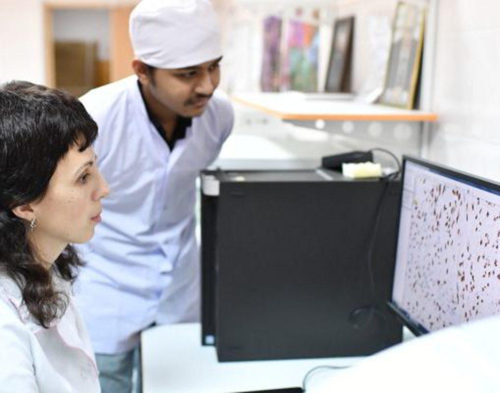 Красноярские ученые проверили наноматериалы на токсичность