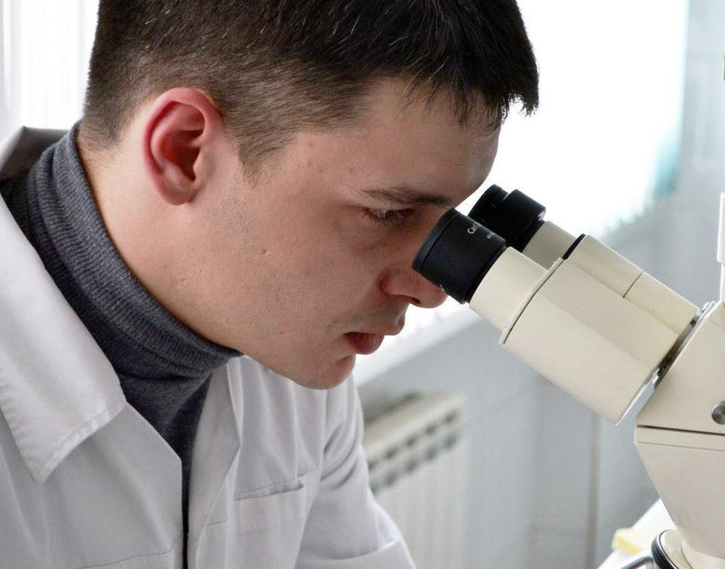 Сибирские ученые создают антитела против ВИЧ