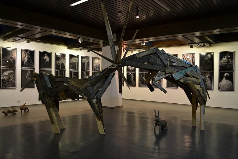 На красноярской биеннале показали «Практики соприкасания» фото 10