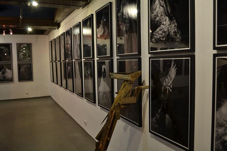 На красноярской биеннале показали «Практики соприкасания» фото 9