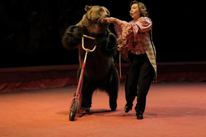 Большой Московский цирк «Триумф» фото 10