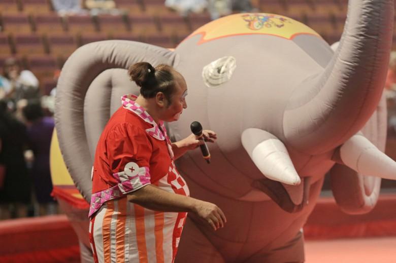 Большой Московский цирк «Триумф» фото 40