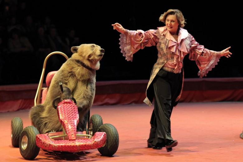 Большой Московский цирк «Триумф» фото 3