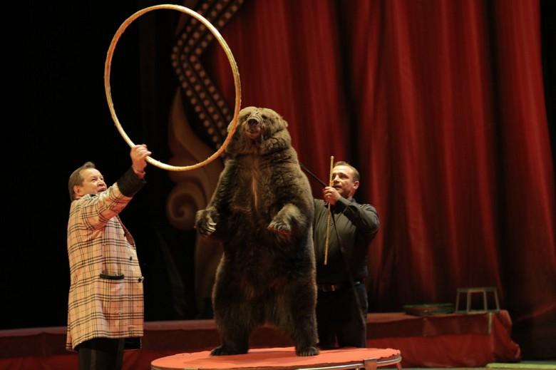 Большой Московский цирк «Триумф» фото 8