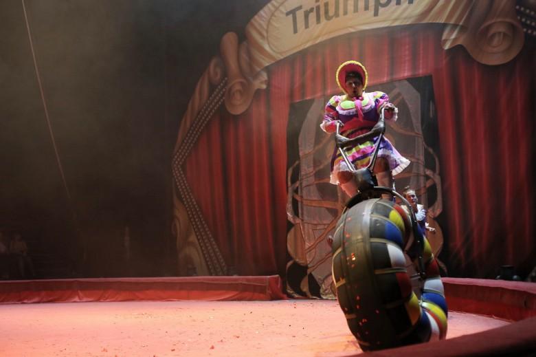 Большой Московский цирк «Триумф» фото 18