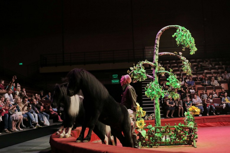 Большой Московский цирк «Триумф» фото 28