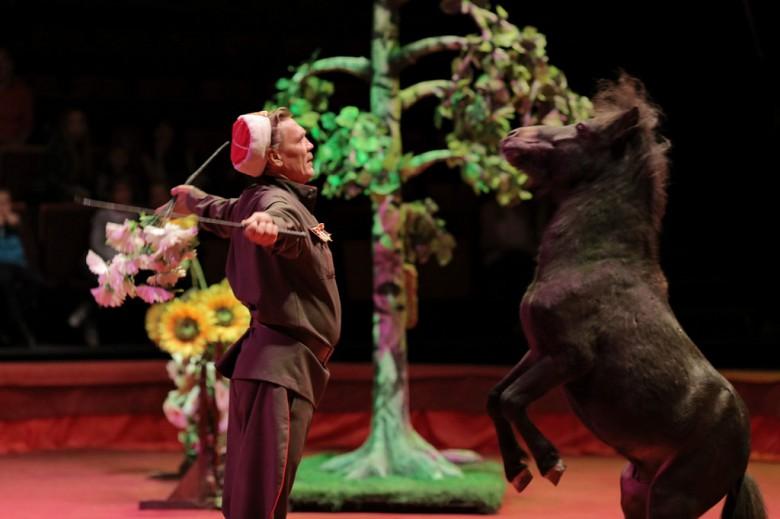 Большой Московский цирк «Триумф» фото 27