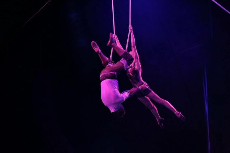 Большой Московский цирк «Триумф» фото 34