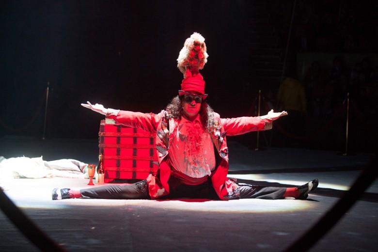 """""""Шоу Воды, Огня и Света!"""" в цирке с 19 декабря фото 13"""
