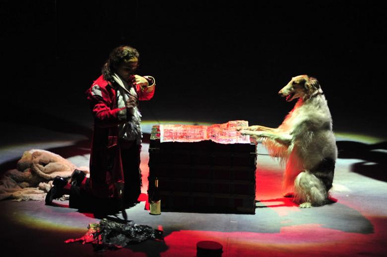 """""""Шоу Воды, Огня и Света!"""" в цирке с 19 декабря фото 14"""